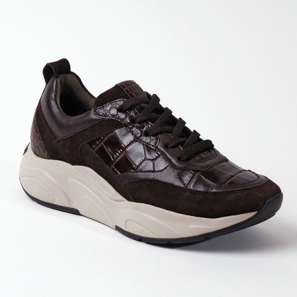 Sneaker Kennel Choco